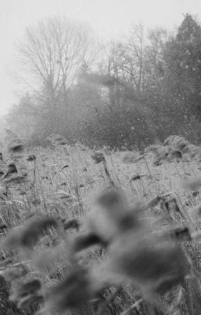 Śmierć. by baphomett666