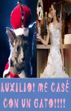 ¡Auxilio! ¡Me casé con un gato! (completa) by Captainleon