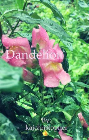 Dandelion by kaichristopher