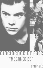 Coincidence or Fate? by erianalol