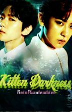 kITTEN DARKNESS | CHANBAEK by RainPhantomhive