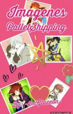 Imagenes PalletShipping by -ImGlaceon-