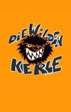 Die Wilden Kerle (DWK) by SarahCo8