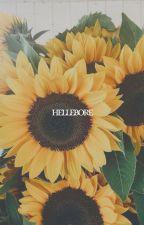 HELLEBORE | Bucky Barnes by buckiplier