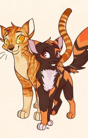Roblox Warrior Cat Ocs The Guide To Warrior Cats Ocs Roleplay Wattpad