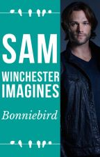 Sam Winchester Imagines by bonniebird