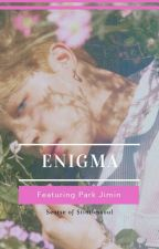 Enigma | pjm by seotse_Kj