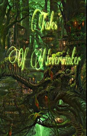 The tales of Neverwinter  by JellyfishOnToast