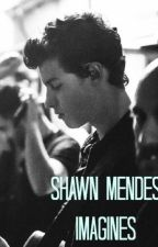 Shawn Mendes Imagines by muffingirl8