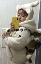 ❝ CRUSH ❞ by peanutbaejoohyun