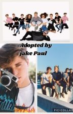 Jake Paul//Adopted by team 10  by curlybesson