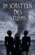 Im Schatten des Sturms (Band 2) by MistyHeff