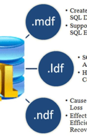 SQL Database Recovery - anjabaader - Wattpad