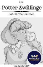 Die Potter Zwillinge - Das Kennenlernen by Colybri007