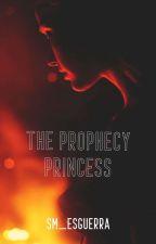 The Prophecy Princess by Heikazuo