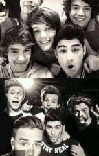 Weetjes/dingens over one direction by HSMYBABY
