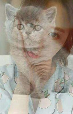 [fanfic] [KookHwa] 3 short- Mèo nhỏ, em là của tôi