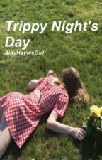 Trippy Night's Day - h.g by AidyHayiesGirl
