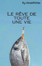 Le rêve de toute une vie - Parodie by libreetfolles
