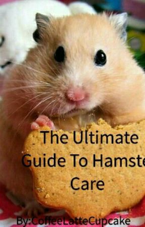The Ultimate Guide To Hamster Care  by CoffeeLatteCupcake