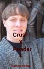 Crush x Reader 2 by PeachesForSatan