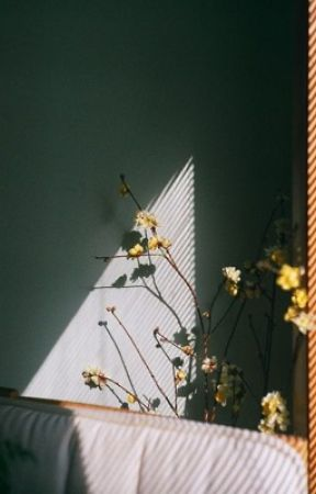 AMBIVALENCE  by motelflowers