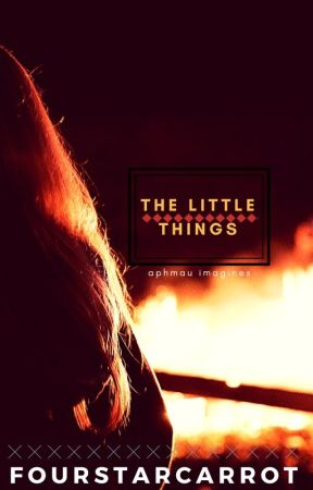 the little things (aphmau imagines) by FourStarCarrot