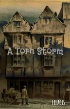 Torn in the Storm - Storm and Silence Fanfiction by Lilacis