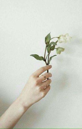Love Cafè | Riren [UNDER MAJOR EDITING] by touchsivan