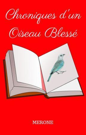Chroniques d'un Oiseau Blessé by hikaru78