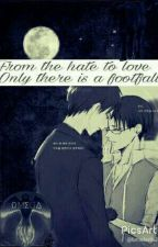 From the hate to love, only there is a Footfall (Ereri) by Uvenlig