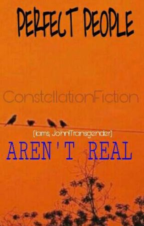 Perfect People Aren't Real|LAMS~Part 1| (TRANSGENDER LAURENS) (Slow Updates) by ConstellationFicton