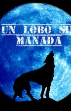 UN LOBO SIN MANADA by pepl169