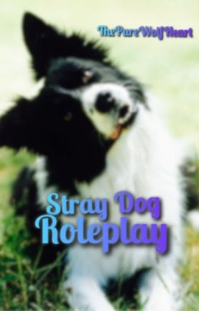 Stray Dog Roleplay ( Open ) by ThePureWolfHeart