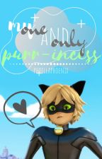 {Chat Noir X Reader} My One and Only Purr~incess by PhoellaPhoenix