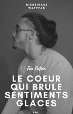 Le coeur qui brûle, sentiments glacés - PNL (NOS) by nissrina06