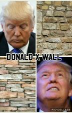 Donald Trump finds love: Donald x wall by bookworm3222