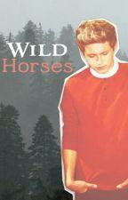 Wild Horses |niall horan| by MagyMolina9