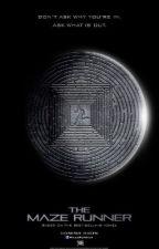 The Maze runner ~ RPG { Ouvert } by Lovenooks