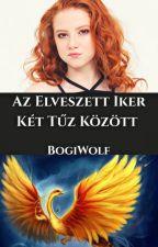 Az elveszett iker, két tűz között (Harry Potter Féleség) by BogiWolf