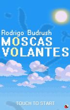 Moscas Volantes by budrush