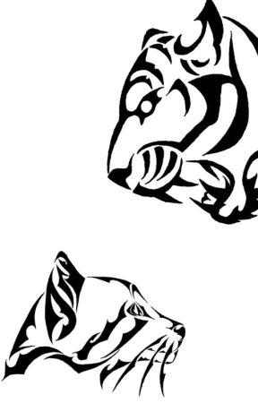 El Tigre y El Gato by manuvd_GZ