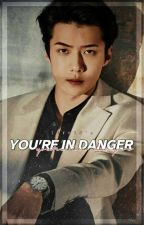 You're In Danger | osh  by cevhun