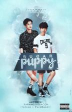Sugar Puppy | Chanbaek by parkingthebacon