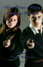Gina Potter e Harry Potter no Passado by francielepelaleitura