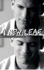 A new leaf || Prison break by georgiapearl21