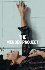 the mendes project [s.m] #pastelawards2k17 by AnyaRoseSteinburg