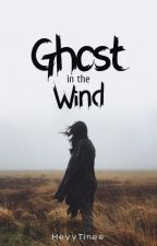 Ghost In The Wind by HeyyTinee