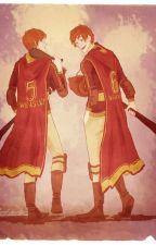 Family's Secret •Weasley Twins• by WeasleyVera