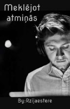 Meklējot atmiņās /Niall Horan/Pabeigts by Rzijaestere